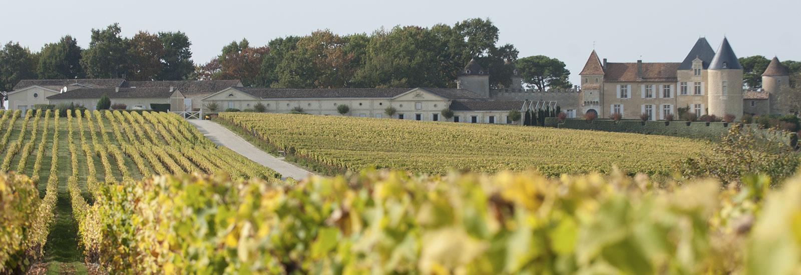 Sauternes wijnen